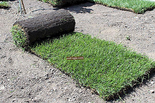 Rul græsplæne