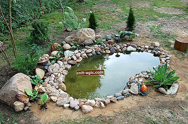 DIY mini-dam i haven i landet
